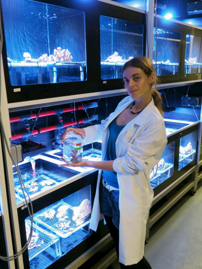 The study's first author Claudia Pogoreutz with a coral.