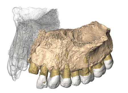 Researchers tested the remains of the earliest human out of Africa in three different labs.