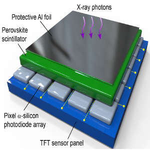 Structure of an X-ray panel sensor
