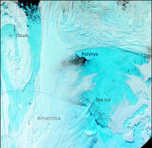 The Weddell Polynya seen from space a few days after it opened in September 2017. Sea ice in blue and clouds in white.