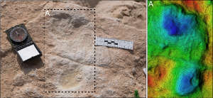 The first human footprint discovered at Alathar and its corresponding digital elevation model